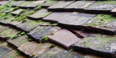 North Littleton roof repair costs